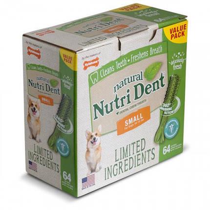 Лакомство Nylabone Nutri Dent Natural жевательное, для чистки зубов, для собак, L, 4 шт, цена за 1 шт, фото 2