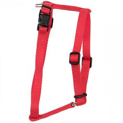 Нейлоновая шлея Coastal Nylon Adjustable для собак, красный, 1.6×40-66 см, фото 2