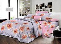 Двуспальный комплект постельного белья евро 200*220 хлопок  (14542) TM KRISPOL Украина