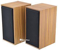 Компьютерные деревянные колонки 2.0 FT-101 Wood (2820)