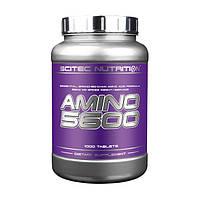 Amino 5600, 1000 tabs
