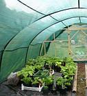 Затіняюча сітка Agreen 85% (6х50м) / рулон 300м2, фото 6