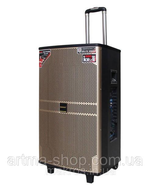 Акустическая аккумуляторная система Tеmeisheng QX 1208, 2 микрофона, Мощность 250 Ватт