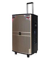 Акустическая аккумуляторная система Tеmeisheng QX 1208, 2 микрофона, Мощность 250 Ватт, фото 1