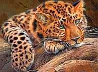 40х30 см алмазная мозаика Леопард вышивка картина мозаїка діамантова вишивка гепард 40 х 30 см