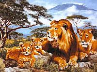 50х40 см алмазная мозаика ПРАЙД вышивка картина мозаїка діамантова вишивка львы леви лев 50 х 40