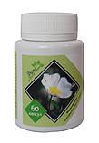 Ладанник защита от вирусных заболеваний, гриппа, простуд 60 капсул, фото 2