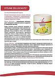 FitLine Zellschutz Фитлайн Цельшутс, комплекс антиоксидантов для иммунитета, вкус апельсина,Германия 450гр, фото 3