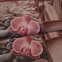 Обои для стен шпалери вологостійкі з орхідеями бумажные влагостойкие цветы 0,53*10м