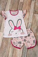 Пижама детская на девочку Зайка : футболка+шорты