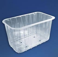 Пластиковий лоток для упаковки ягід на 1 кг