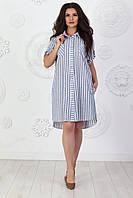 Сукня сорочка арт. 390 блакитний в білу смужку