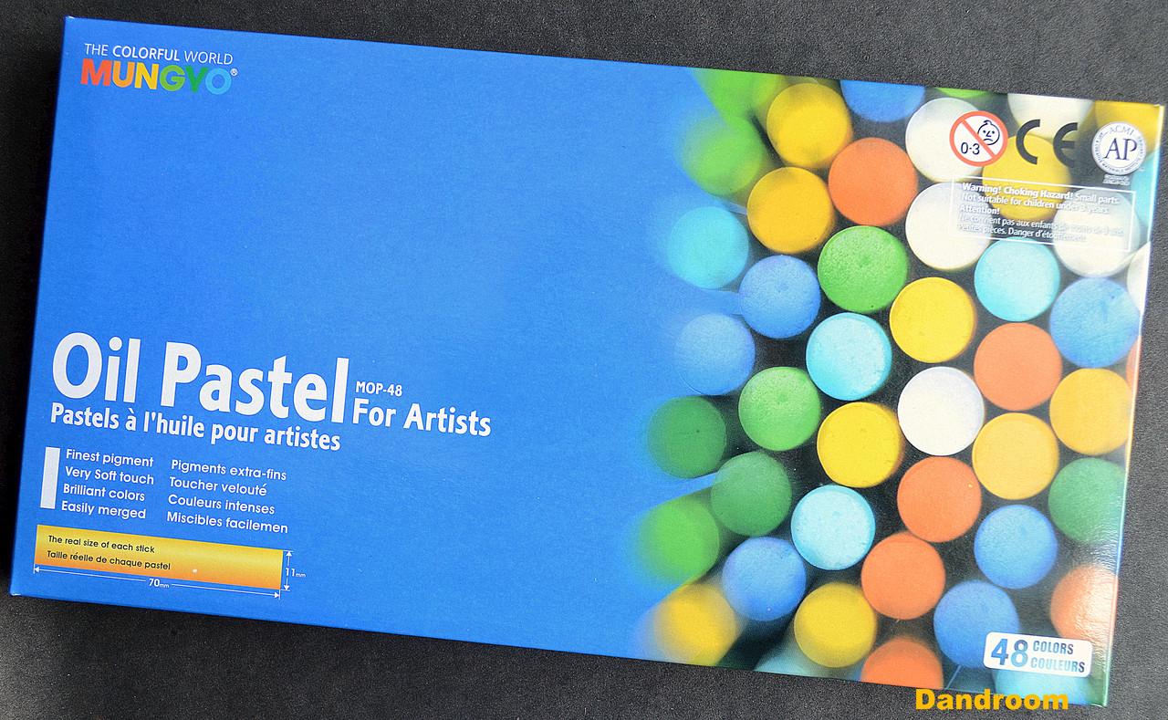 Пастель олійна професійна, 48 кольорів, MOP-48, MUNGYO