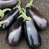 Семена баклажана Дестан F1, 10 грамм, фото 3