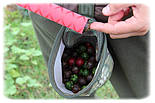 Сумка для бойлов Orient Rod Boilies Bag, фото 6