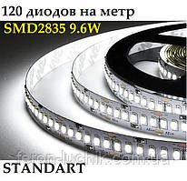 Светодиодная лента 12V 2835 SMD 120 шт/м 9.6 Вт/м IP20 Standart