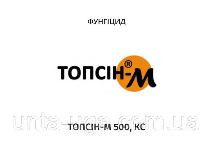 Топсин М 500 фунгицид, фото 2