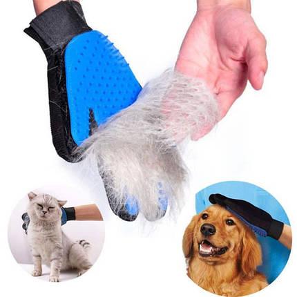 Перчатка для вычесывания шерсти у животных TRUE TOUCH, фото 2