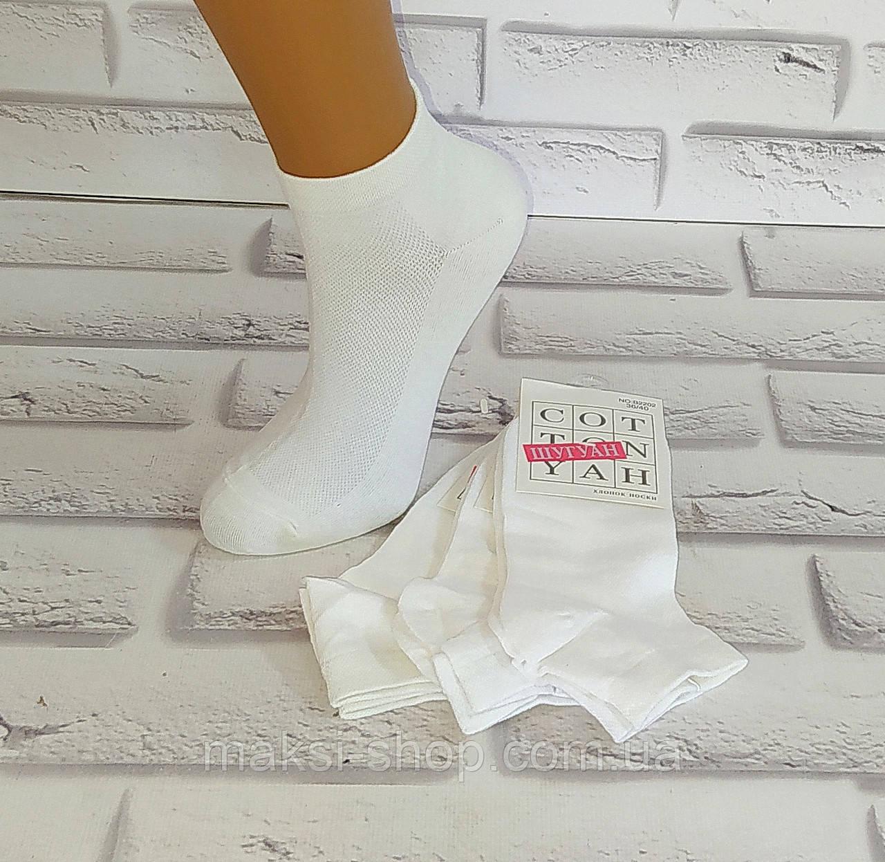 Шкарпетки жіночі бавовна за 1 пару 36-40 раз (2202) Шугуан
