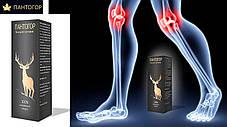 Пантогор гель для суставов/ от боли в суставах/ Мазь для суставов, фото 3