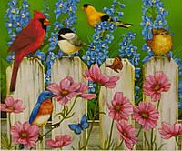 Картина по номерам Птицы 40x50 см в коробке Вектор OTG6474