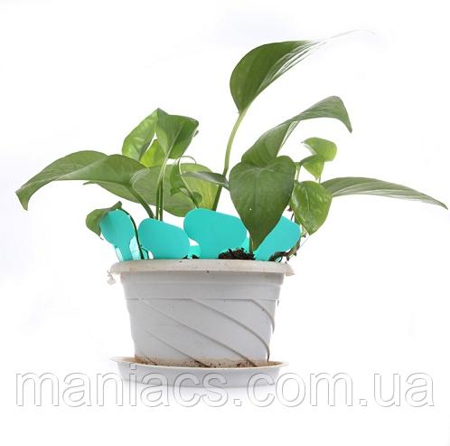 Табличка информационная для растений (белая)
