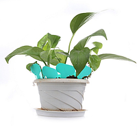 Табличка информационная для растений (белая), фото 1
