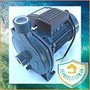 Центробежный поверхностный насос для полива Wasser Master CPM 158 0.75 кВт, фото 2