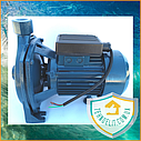 Центробежный поверхностный насос для полива Wasser Master CPM 158 0.75 кВт, фото 3