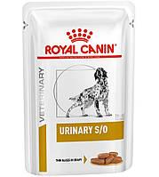 Royal Canin Urinary S/O Влажная диета для собак при мочекаменной болезни 100 г
