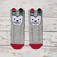 """Детские демисезонные носочки ТМ """"Дюна"""" с рисунком (зайчик). Размеры: 12-14, 14-16"""