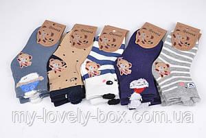 """ОПТОМ.Детские носки """"Фенна"""" ХЛОПОК (FEC026/3-5)   10 пар, фото 2"""