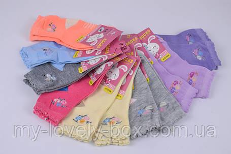 "ОПТОМ.Детские носки на девочку ""КОРОНА"" ХЛОПОК (C3133/20-25) | 12 пар, фото 2"
