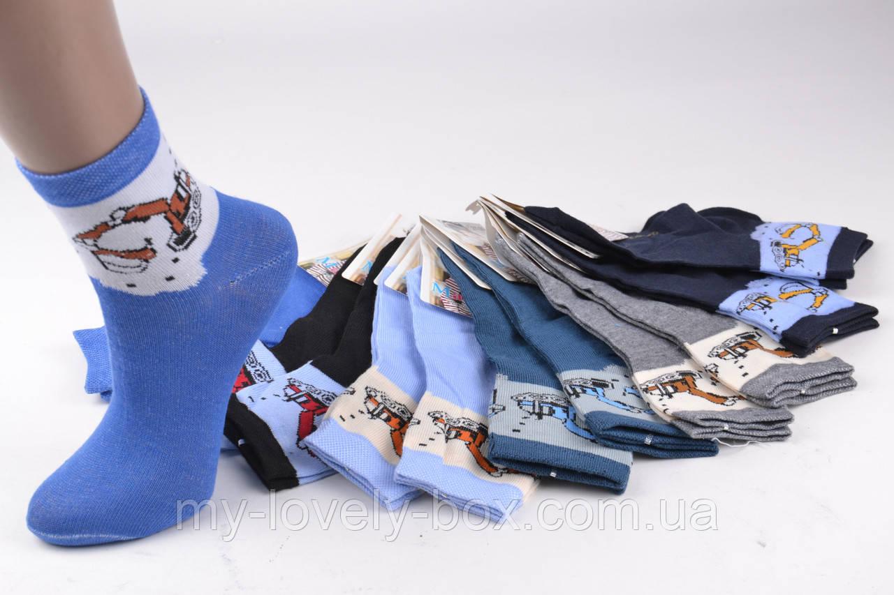 ОПТОМ.Детские Хлопковые носки на мальчика (TKC171/L) | 12 пар