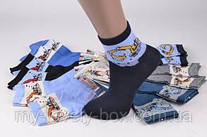 ОПТОМ.Детские Хлопковые носки на мальчика (TKC171/L) | 12 пар, фото 2