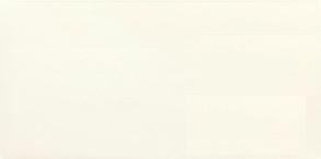 Плитка облицовочная Paradyz Ceramica Adilio Bianco Sciena 29.5 x 59.5, фото 2