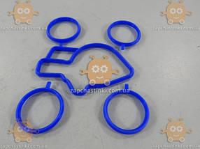 Уплотнитель впускного коллектора дросельной заслонки ВАЗ 2110 - 2112 СИЛИКОН! (5шт) синий (пр-во CS-20 Россия), фото 2