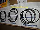Кольца поршневые Газ 2410, 3302, газель, волга, Газ 53, 92,0 мм (производитель Marmot, Польша), фото 6