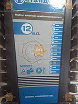 Набор ключей рожково - накидных CrV 6-22мм (12шт) (пр-во СТАНДАРТ Россия) ПД 111799, фото 2