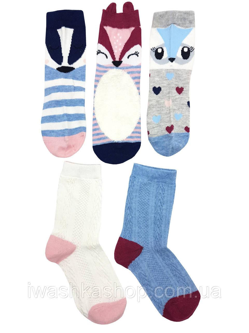Комплект носков с животными на девочек 2 - 3 лет, р. 23 - 26, Young Dimension by Primark.