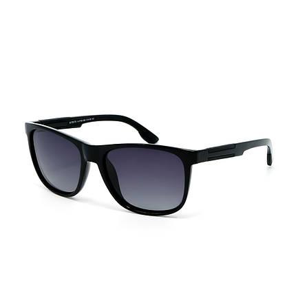Солнцезащитные очки Matrix MT8576 10-P76-F26 глянцевые     ( MT8576-10-P76-F26 ), фото 2