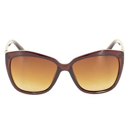 Солнцезащитные очки PolarEagle Polar PE05314 C2     ( PE05314-02 ), фото 2