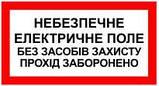 """Знак """"опасное электрическое поле без средств защиты проход запрещен"""", фото 2"""
