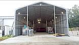 Шатер 8х20 метров ПВХ 600г/м2 с мощным каркасом под склад, гараж, палатка, ангар, намет, павильон садовый, фото 2