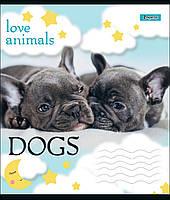 Тетрадь школьная А5/12 лин. 1В LOVE ANIMALS, набор 25 шт., код: 764471, фото 2