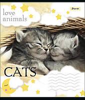 Тетрадь школьная А5/12 лин. 1В LOVE ANIMALS, набор 25 шт., код: 764471, фото 3