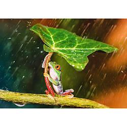 "Пазли - (500 елм.) - ""Зелена парасолька"" / Trefl"