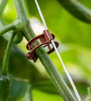 50 шт. пластиковые зажимы для растений подвязки винограда и помидоров 23 мм