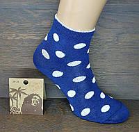 """Носки женские средней высоты """"Горошки"""". Белый на синем."""