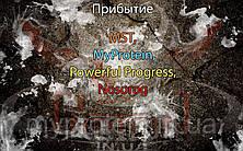 Поступление: MST, MyProtein, Powerful Progress, Nosorog.